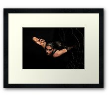 Black Widow springing from his spiderweb Framed Print