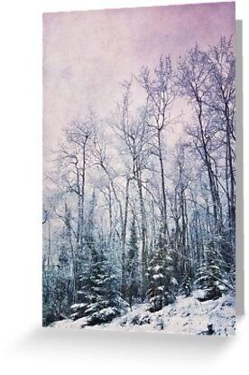 winter forest by Priska Wettstein