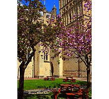 Exeter Cathedral Cafe Photographic Print