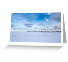 Winter, Northern Ontario Greeting Card