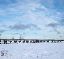 Bridge to Nowhere, Northern Ontario by aclepsa