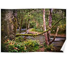 Skookumchuck River Poster