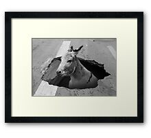 Guess What This Picture Is Named Framed Print