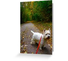 Going my way? Greeting Card