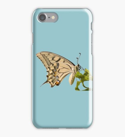 Swallowtail Butterfly Vector Isolated iPhone Case/Skin