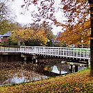 Bridge and Autumn colors by ienemien
