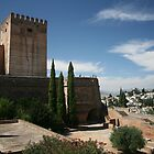 Alcazaba, Alhambra, Spain by Peter  Thomas