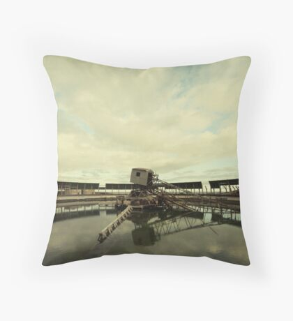 The Steetley Witch Throw Pillow