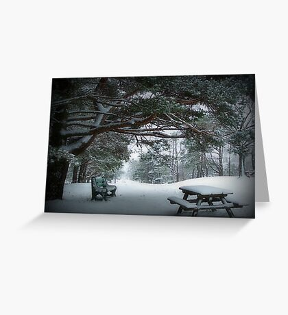 December Park Greeting Card
