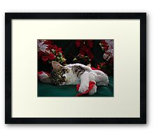 Cool Kitty Cat Lying on its Side Holding a Red Xmas Ribbon Dreaming of Christmas ~ Kitten Framed w Poinsettias Framed Print