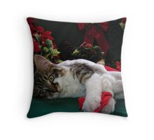 Cool Kitty Cat Lying on its Side Holding a Red Xmas Ribbon Dreaming of Christmas ~ Kitten Framed w Poinsettias Throw Pillow