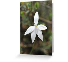 an albino Greeting Card