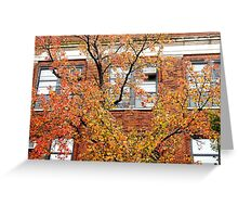 Brick leaves, Autumn in New York City  Greeting Card