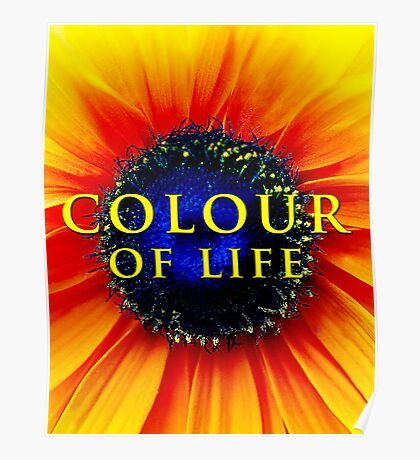 Colour of Life [cover image] Poster