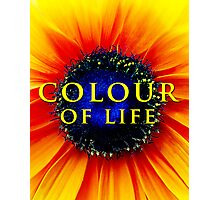 Colour of Life [cover image] Photographic Print