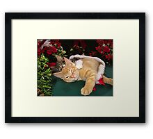 Cheshire Cat Grin ~ Cute Kittens in Love ~ Christmas Kitties in a Santa Hat Lying Down w/ Paws Stretched Out Framed Print