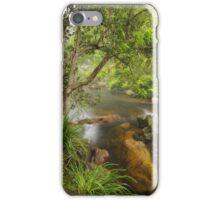 Brodribb River #2 iPhone Case/Skin