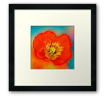 Colour of Life XLI [square] Framed Print