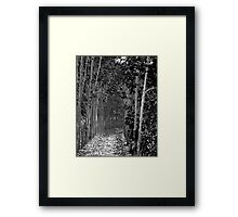 Paths to follow to where? Framed Print