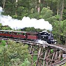 Puffing Billy over Trestle Bridge by James Millward