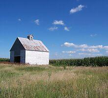 Lonely Illinois barn by purplefoxphoto
