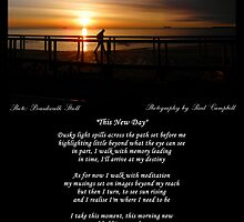 ~ This New Day ~ A collaboration with Paul Campbell ~ by Donna Keevers Driver