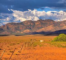 Ricketty Fence at West Wilpena Wall  by Simon Bannatyne