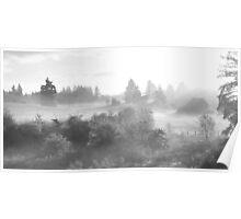 fog light Poster