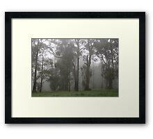 Misty morning in the Dandenongs Framed Print