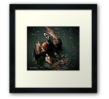 Wash and Go  Framed Print