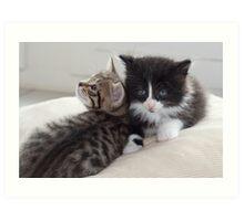 Sad Kitten Art Print