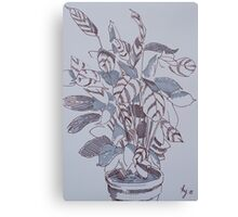 Potted Plant Illustration - Calathea Canvas Print