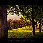 Promised Land, Bellingen, NSW Australia by Patrick Wu