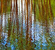 Pond Patterns by Renee Hubbard Fine Art Photography