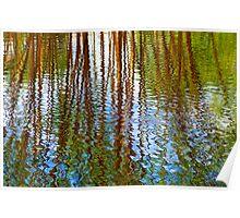 Pond Patterns Poster