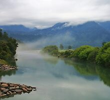 jacobs river  south westland  nz by rina  thompson