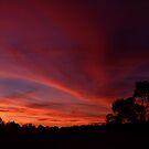 Big Sky by Ruth Anne  Stevens