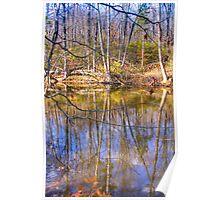 Sodalis Nature Park Reflection Poster