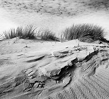 Dunescape 01 - St Annes on Sea Dunes, Fylde, Lancs by Simon Lupton