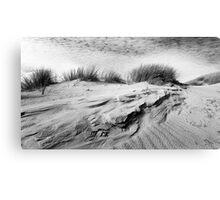 Dunescape 01 - St Annes on Sea Dunes, Fylde, Lancs Canvas Print