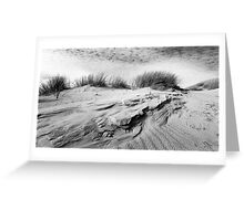 Dunescape 01 - St Annes on Sea Dunes, Fylde, Lancs Greeting Card