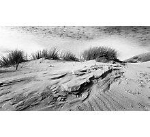 Dunescape 01 - St Annes on Sea Dunes, Fylde, Lancs Photographic Print