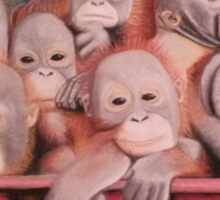 """Pastel and Charcoal Drawing Titled """"Orphans Of Palm Oil"""" Sticker"""