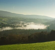 Lazy misty morning over the St Mullins, County Carlow, Ireland by Andrew Jones