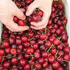 Cherries for a wedding party by Deanne Chiu