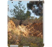 Red Hill Gold Rush Site Victoria  iPad Case/Skin