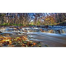 Autumn in Teesdale Photographic Print