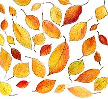 autumnal mood by Nataliya Stoyanova