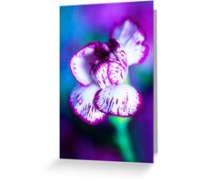 Colour Of Life XII [Print & iPad Case] Greeting Card