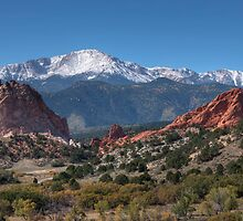 The Garden of the Gods by Merja Waters